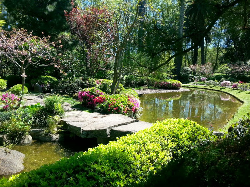Jard n japon s de montevideo wikipedia la enciclopedia for Plantas jardin japones