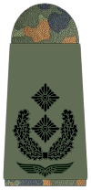 Luftwaffe-261-Oberstleutnant.png