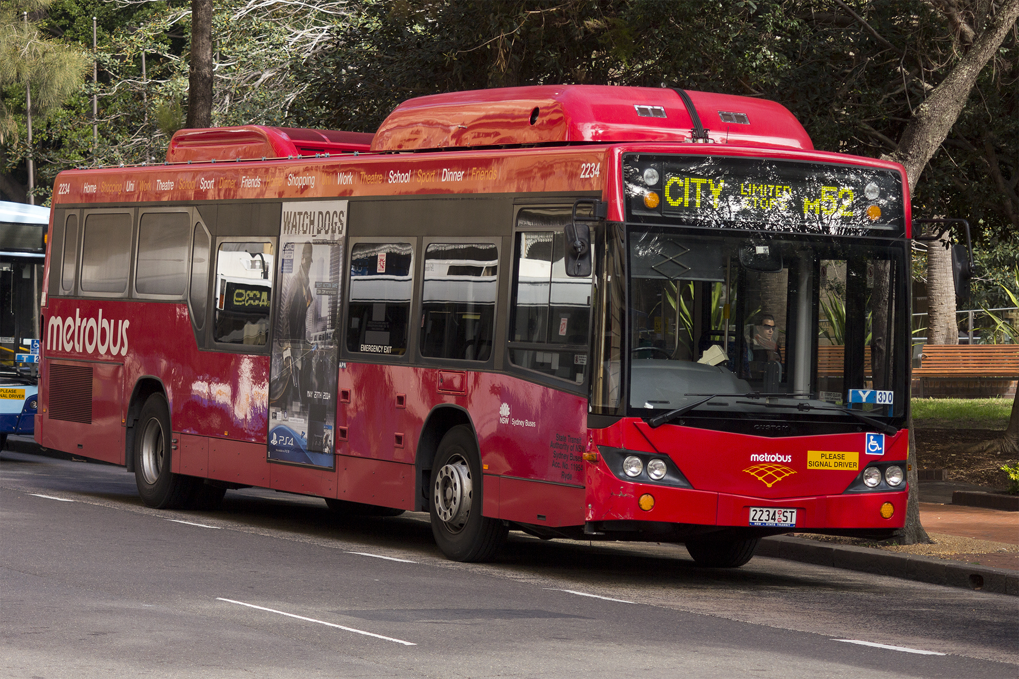 File:Metrobus liveried (2234 ST), operated by Sydney Buses, Custom Coaches