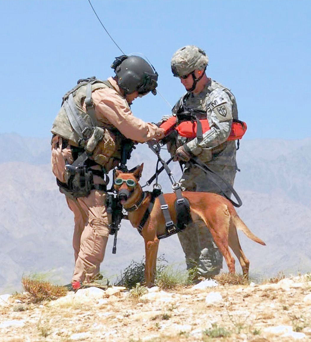 The Dogs Of War: Troops Obama Forgot To Mention