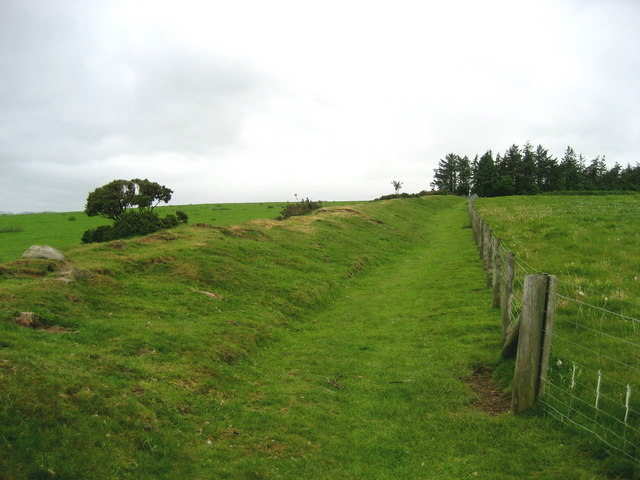 Offa's Dyke on Rushock Hill - geograph.org.uk - 450158