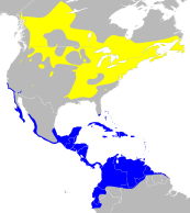 Setophaga ruticilla map.png