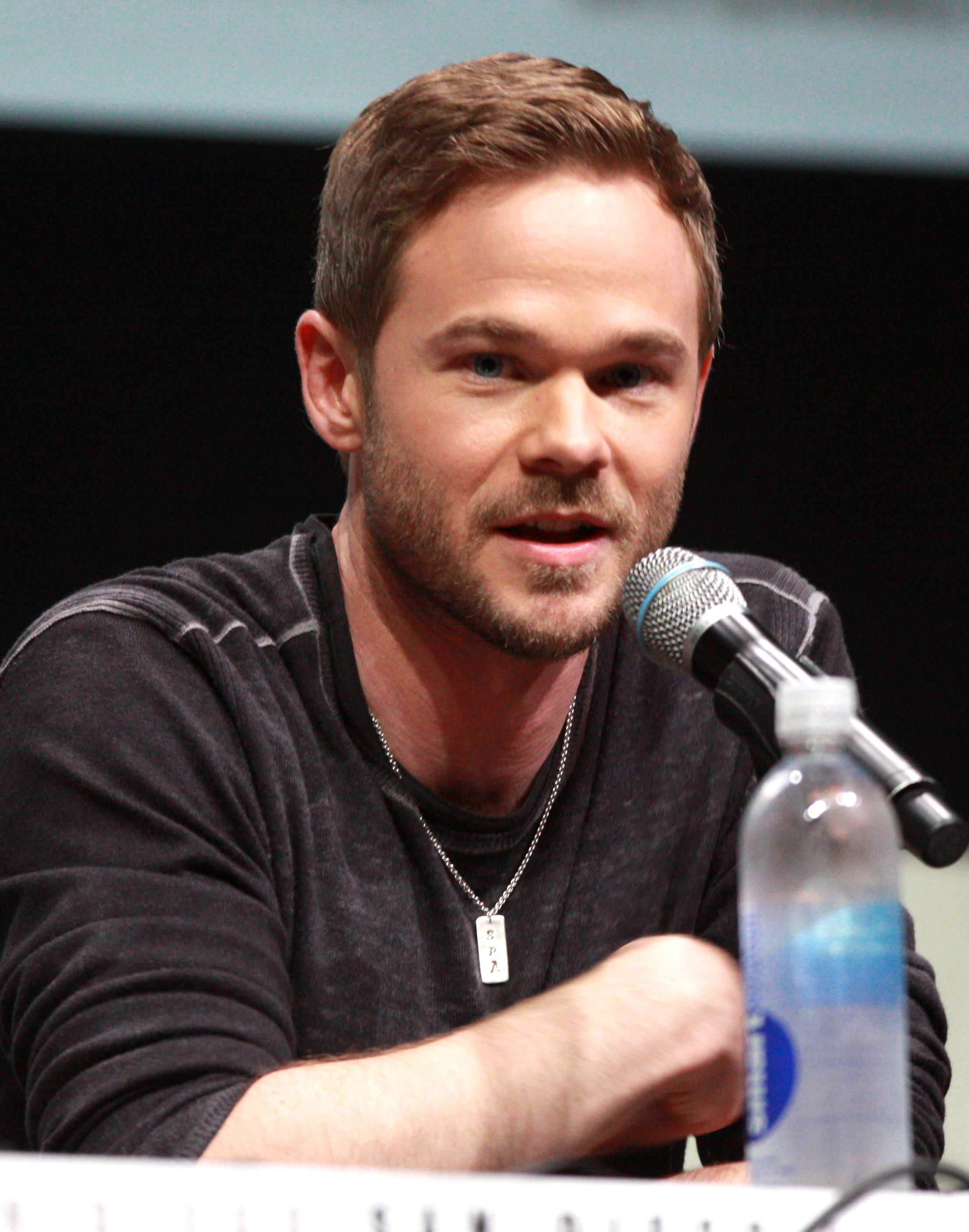 shawn ashmore the following