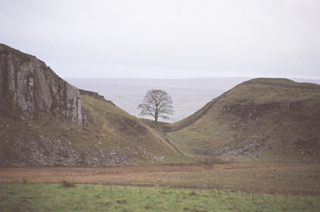 File:Sycamore Gap - from the north - geograph.org.uk - 480015.jpg