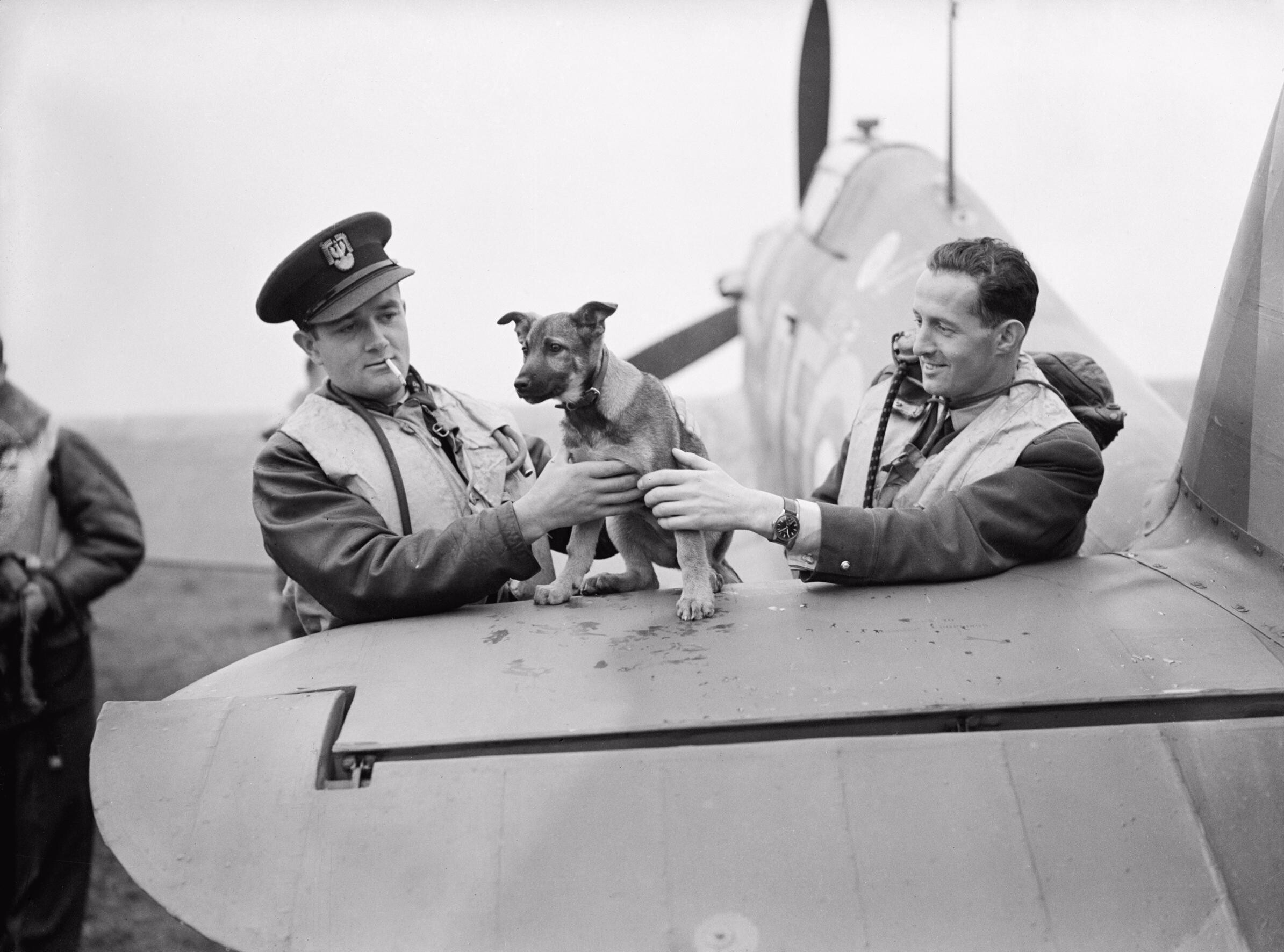 File:The 303 Polish Fighter Squadron in the Battle of Britain CH1537