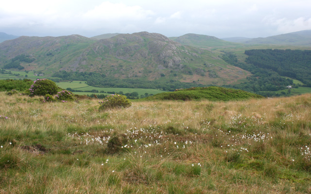 View across Eskdale from Muncaster Fell - geograph.org.uk - 840350