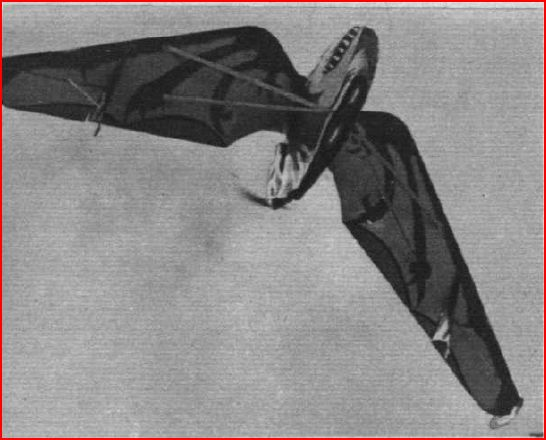 Pterodactyl IV pictured from below (Flight 1928) - note the reptile-like paint scheme