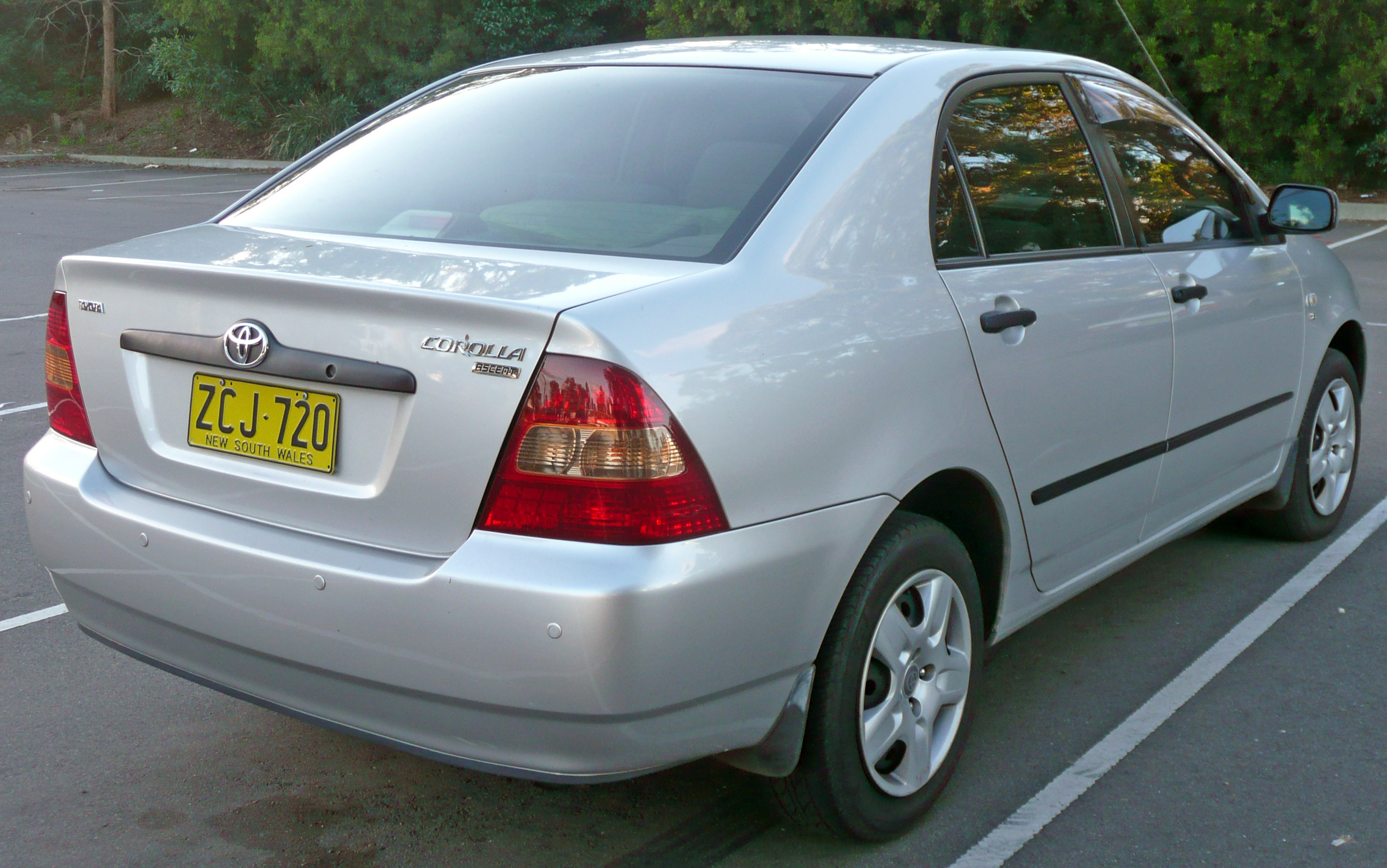 Used Car Export Business