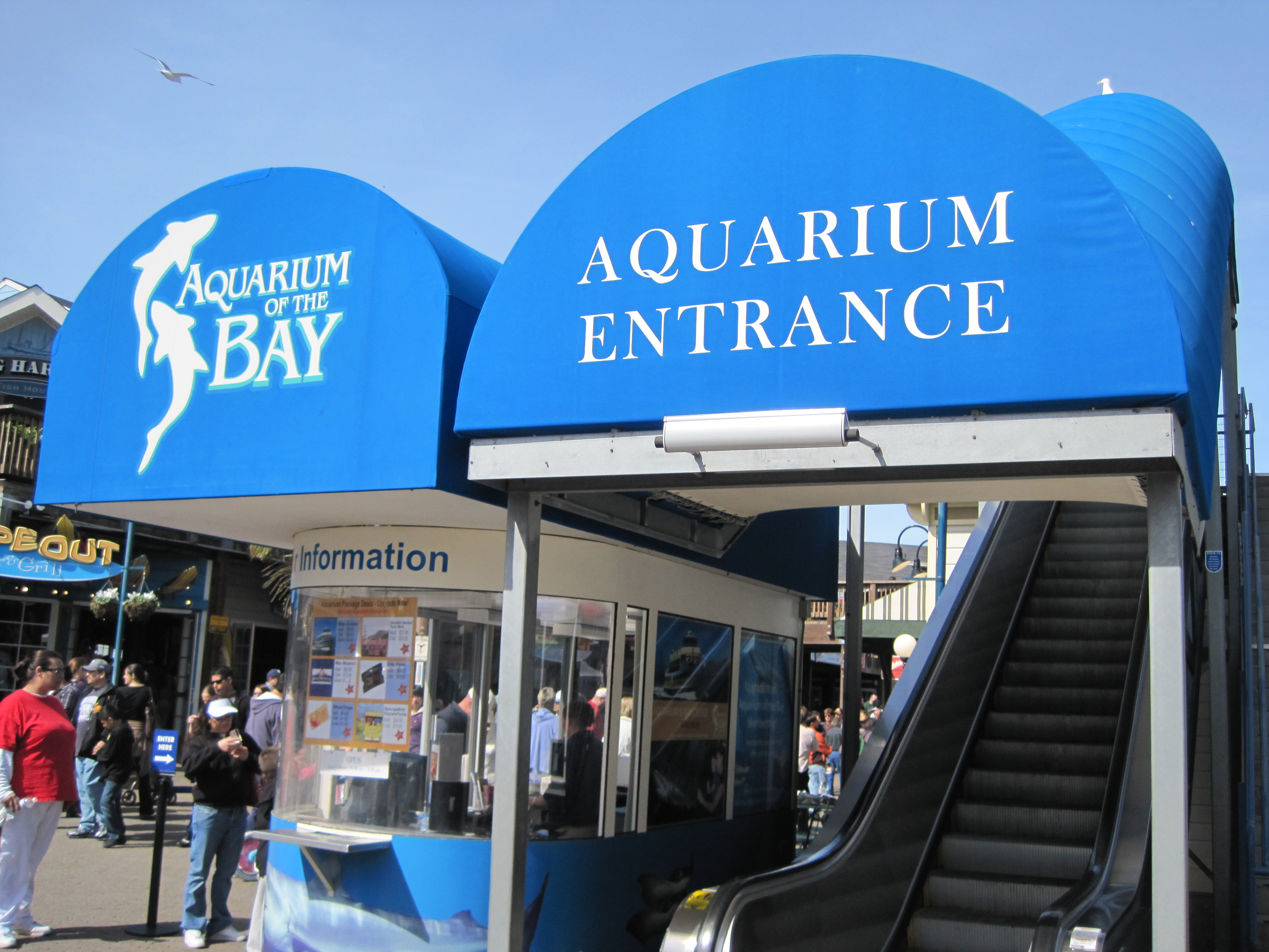 File Aquarium Of The Bay Entrance Jpg Wikimedia Commons
