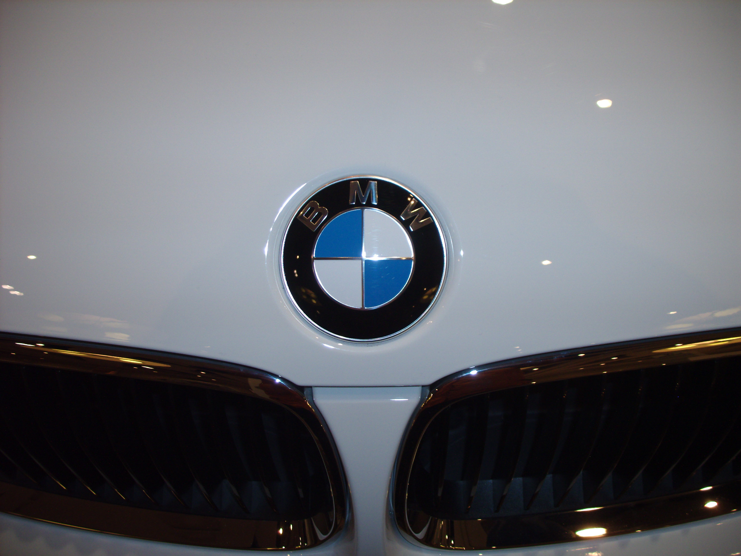 The round BMW logo used for all models