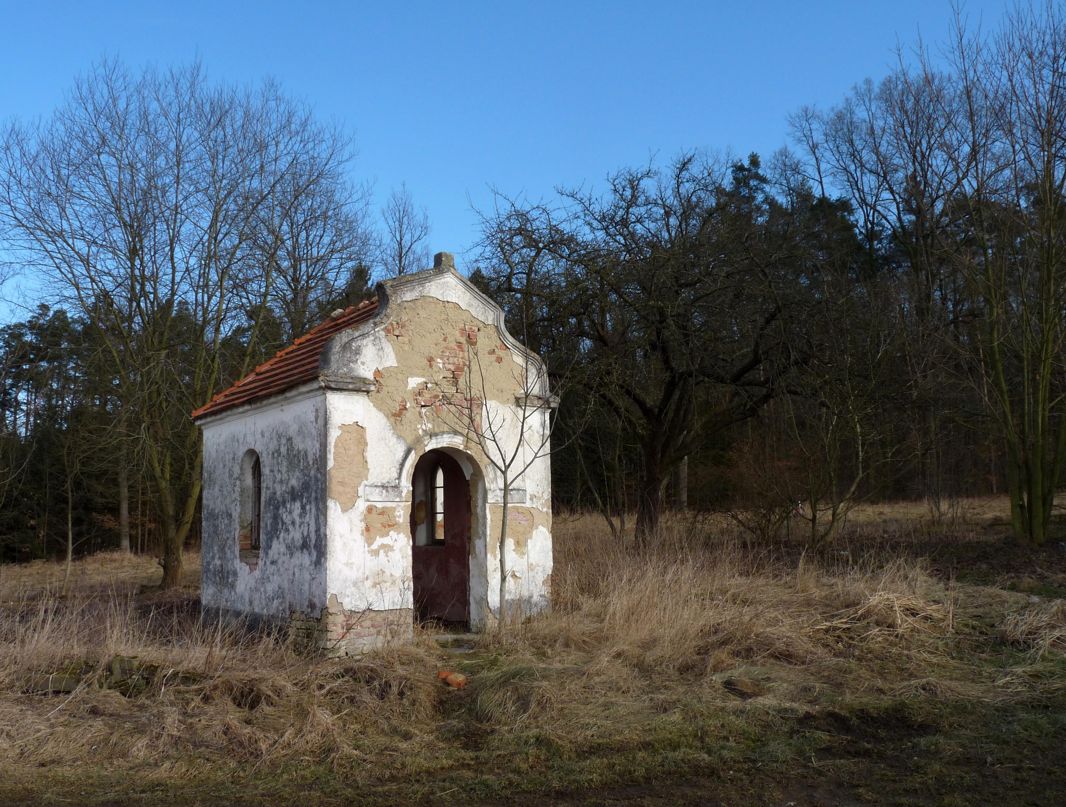 Branišovský les - Wikipedie