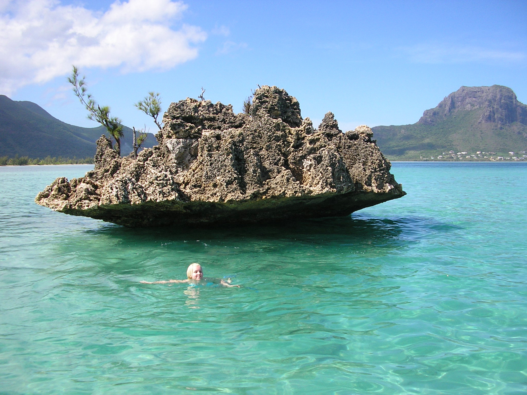 Whale Rock is great for snorkelling where hammerhead sharks may be spotted