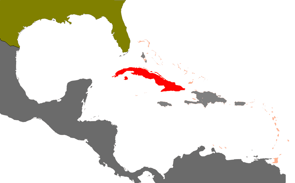 FileCubaus MapPNG Wikimedia Commons - Us and cuba map