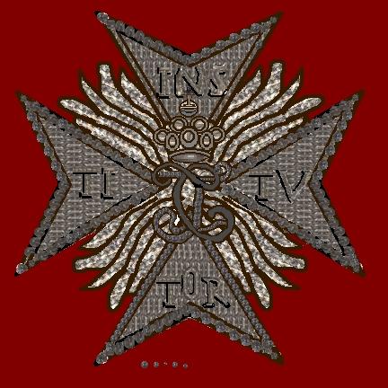 File:De geborduurde ster van de Keurvorstelijk Pfalzische Leeuwen-Orde.jpg