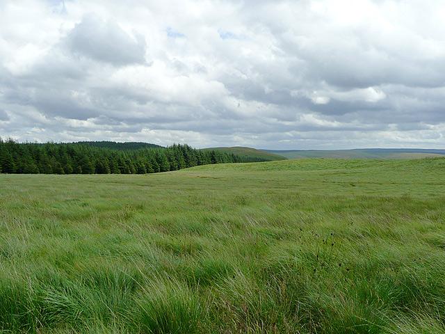 File:Elenydd moorland west of Pysgotwr, Ceredigion - geograph.org.uk - 1434624.jpg