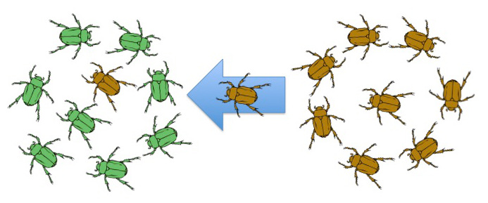 Conditions For Natural Selection Mechanism