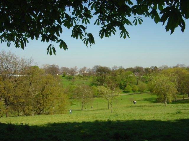 Greenwich Park - geograph.org.uk - 4715