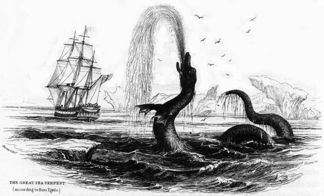 Image result for sea serpent