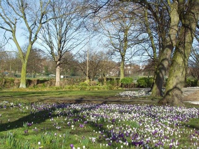 Kirkstall Abbey grounds - geograph.org.uk - 140549