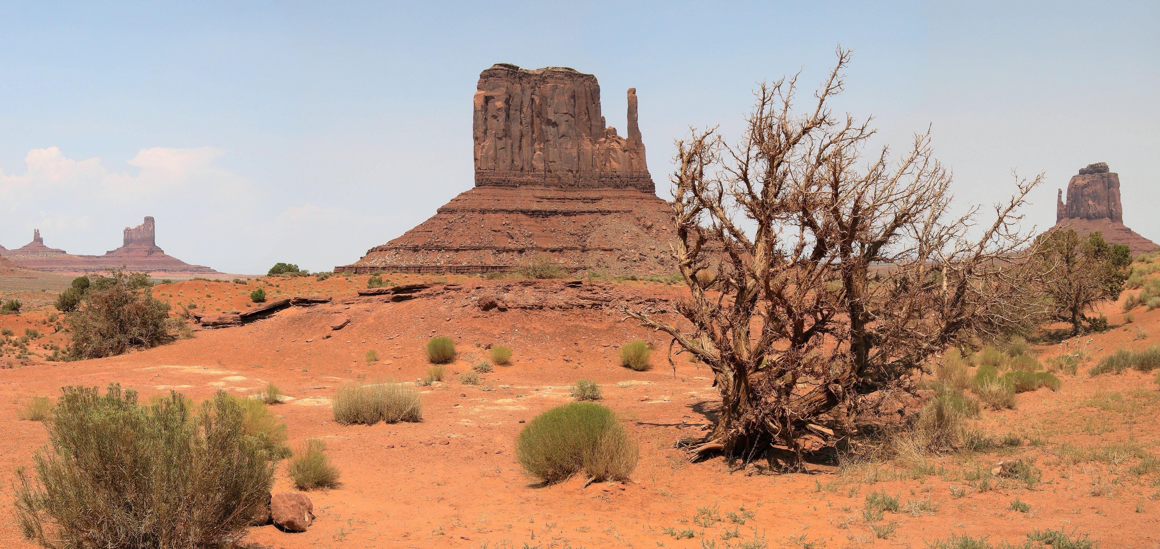 пустыня скалы растительность загрузить