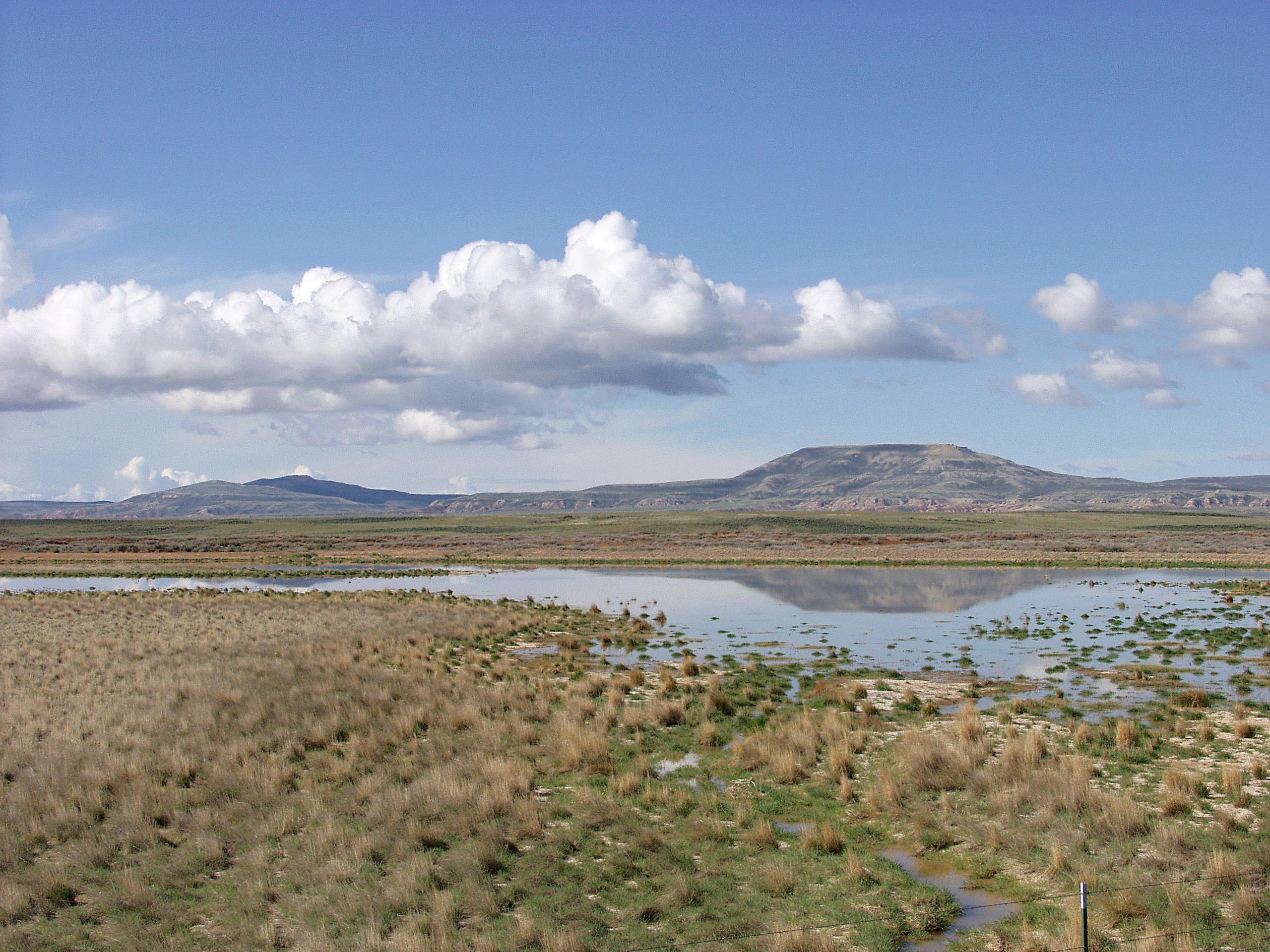 grassland features landscape
