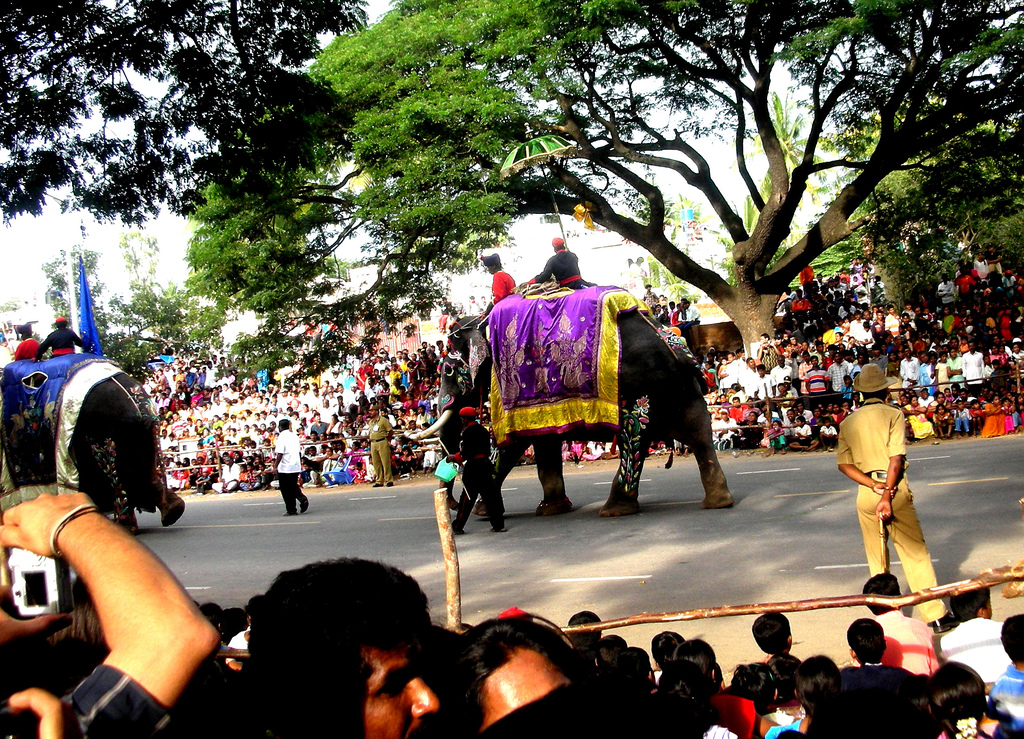http://upload.wikimedia.org/wikipedia/commons/c/c5/Mysore_Dasara_procession.jpg