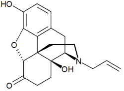 Molecular structure of naloxone.