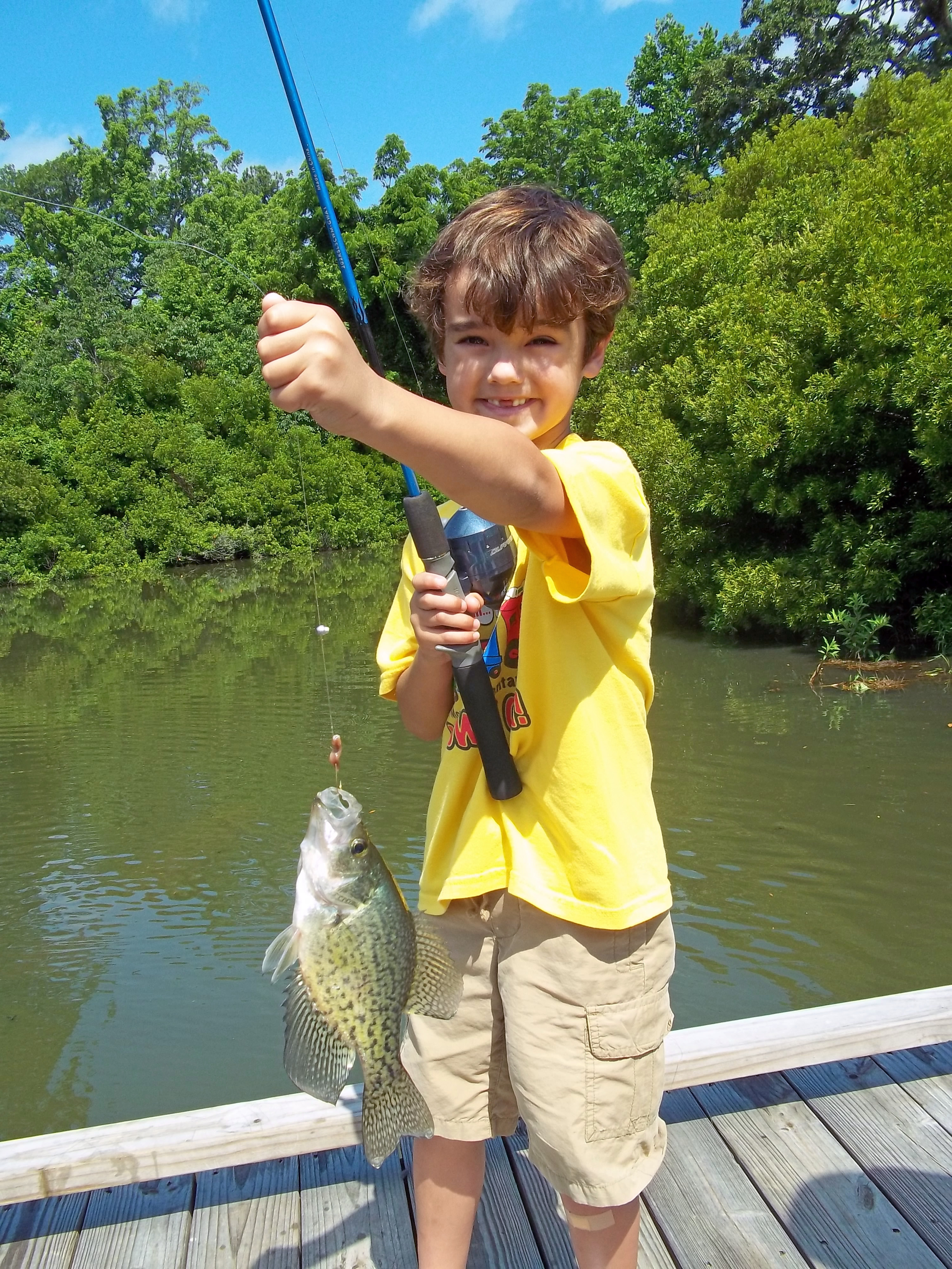 File nice crappie 7335780206 jpg wikimedia commons for Lake anna fishing report