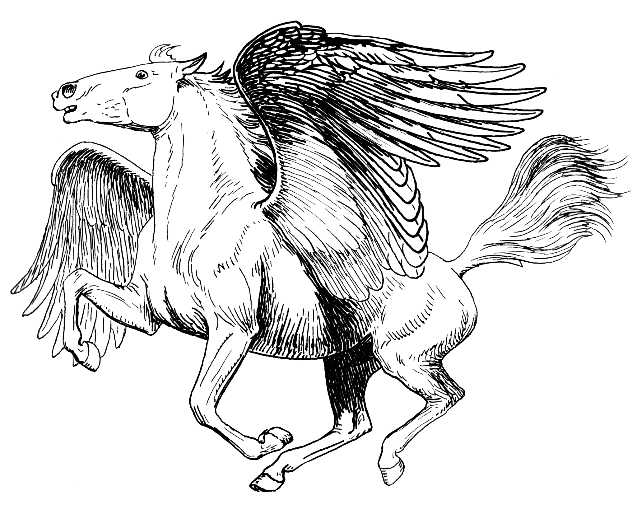 File pegasus psf png wikimedia commons for Coloring pages of pegasus