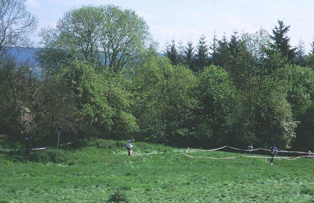 Penyard Park - geograph.org.uk - 28418