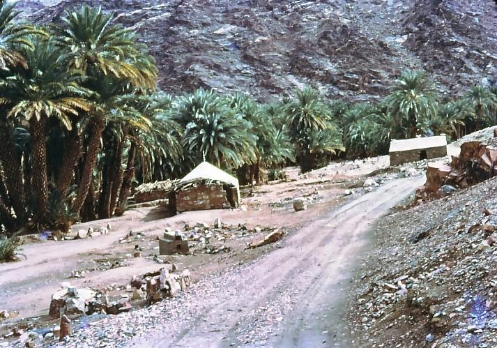 גן-שמואל 1968-במדבר סיני