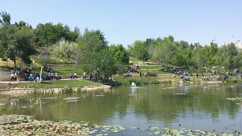 """אגם גן החיות התנ""""כי"""