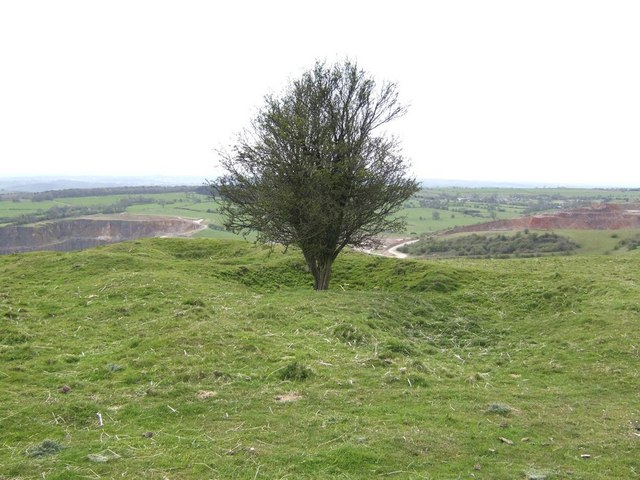 Solitary Hawthorn Tree on the Weaver Hills - geograph.org.uk - 779068