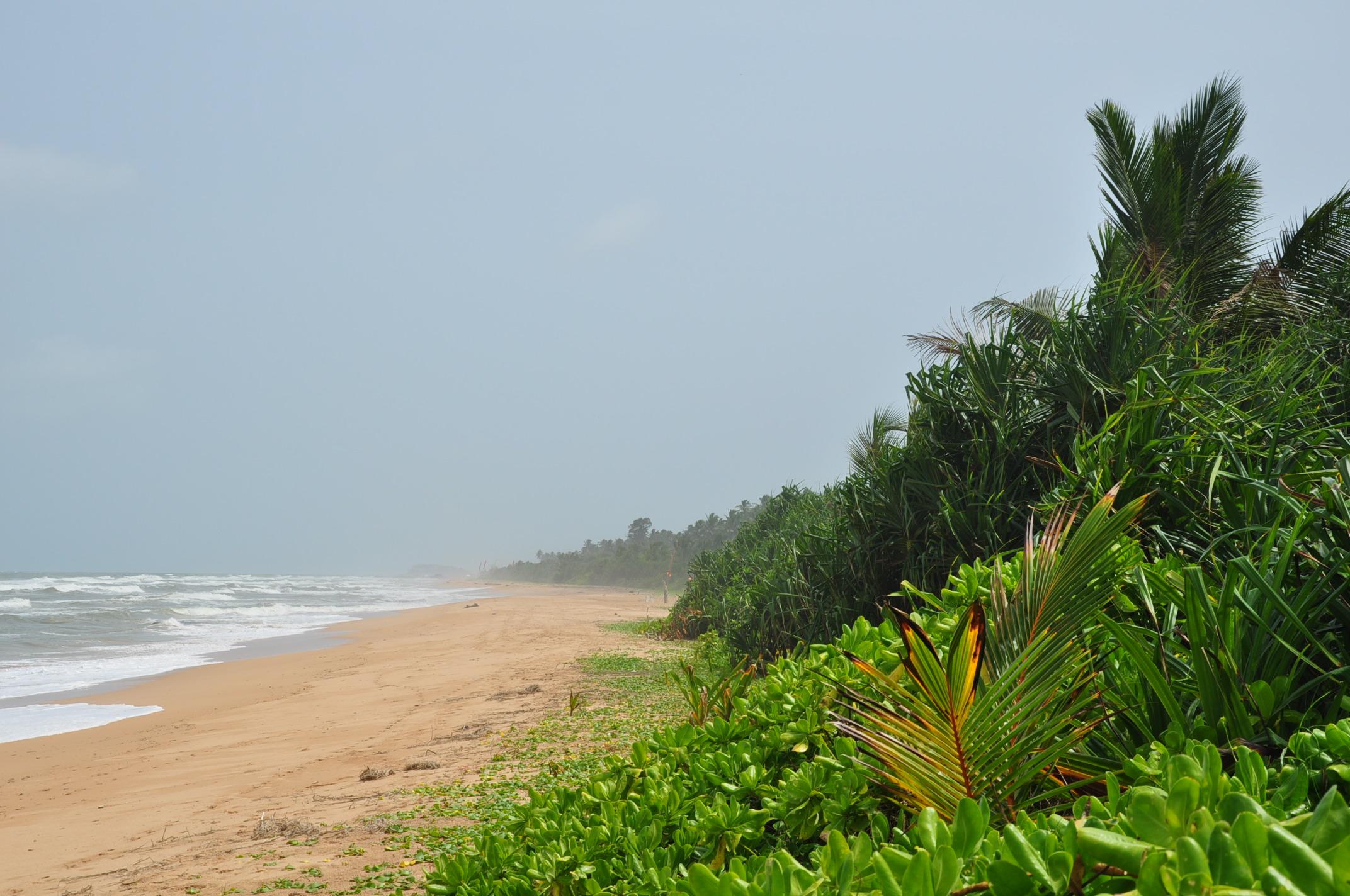 Dehiwala beach sri lanka 1