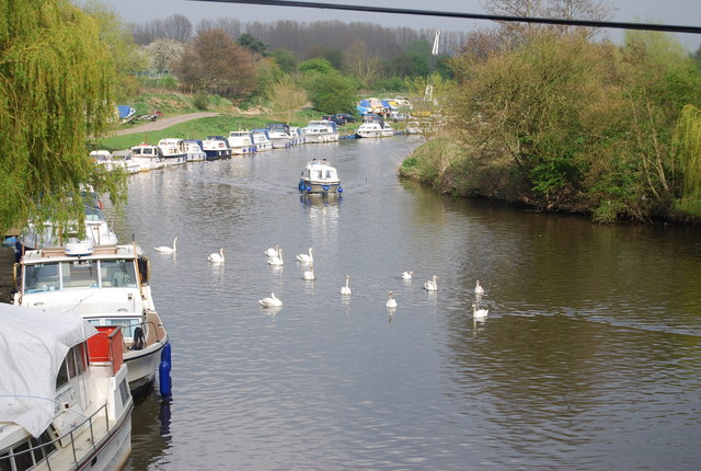 Swans and boats on the River Medway east of Bow bridge, Wateringbury - geograph.org.uk - 1267081