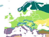 Biomes of Europe and surrounding regions: tundra alpine tundra taiga montane forest temperate broadleaf forest mediterranean forest temperate steppe dry steppe Vegetation Europe.png