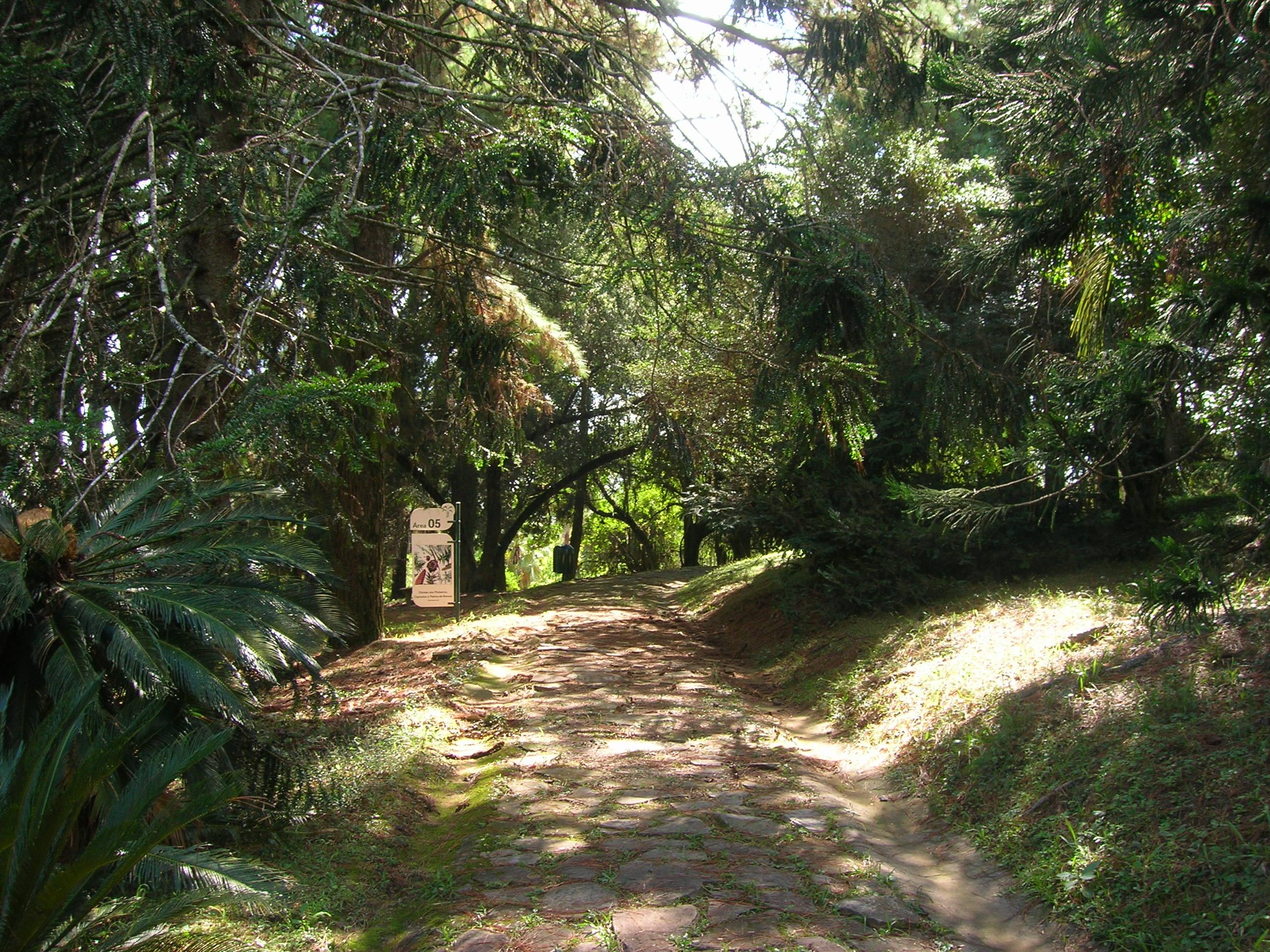 fotos jardim botanico porto alegre : fotos jardim botanico porto alegre:File:Área cinco jardim botânico porto alegre.JPG – Wikimedia Commons