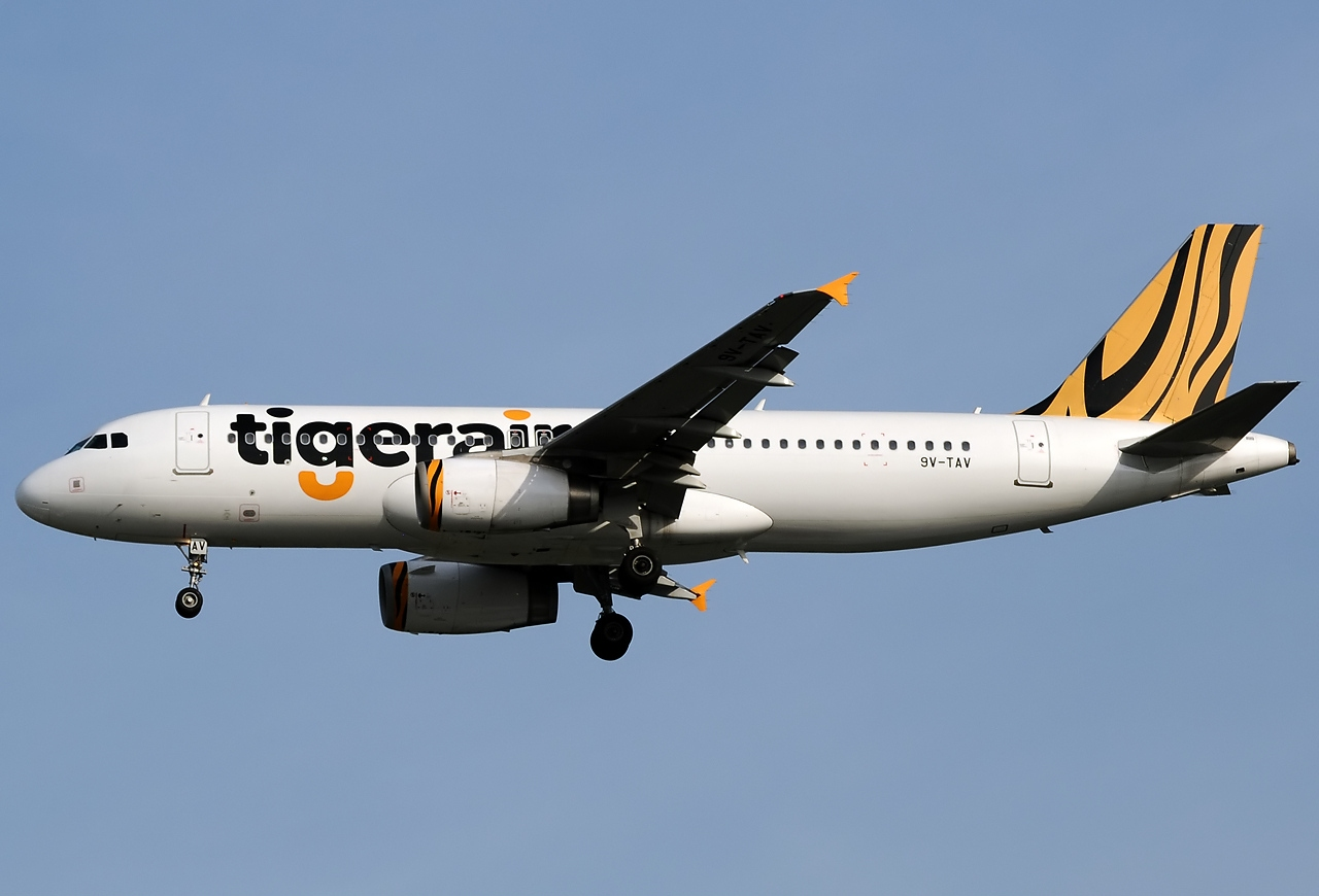 tiger airways case study This is tigerair infrequent flyers case study by andy jones on vimeo, the home for high quality videos and the people who love them.