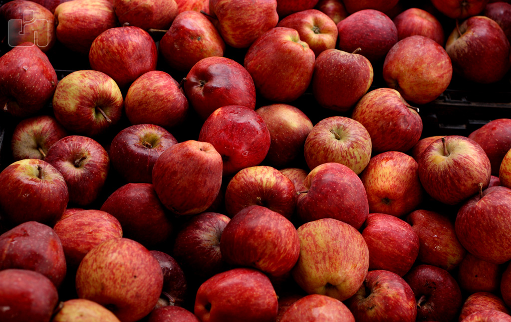 File:Apples Fruits Horticulture Agriculture produce India