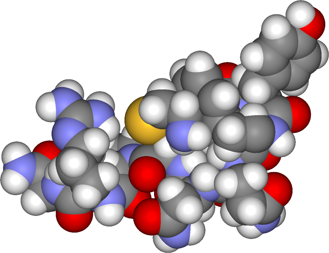 Vasopressine - Spacefilling model of arginine vasopressin. Created using Accelrys DS Visualizer Pro 1.6 and the GIMP - Fvasconcellos - Trlkly - Wikimedia Commons