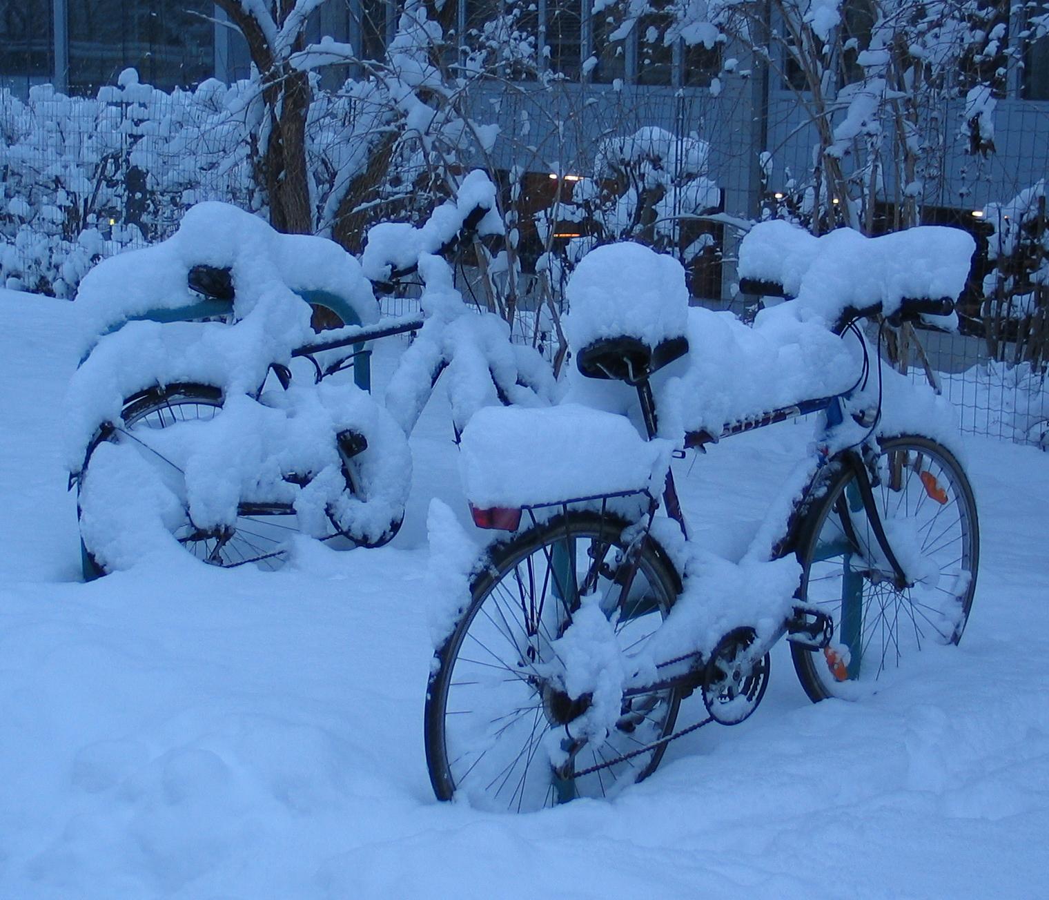 номер картинка велосипед рождество под снегом санитарные меры принятые