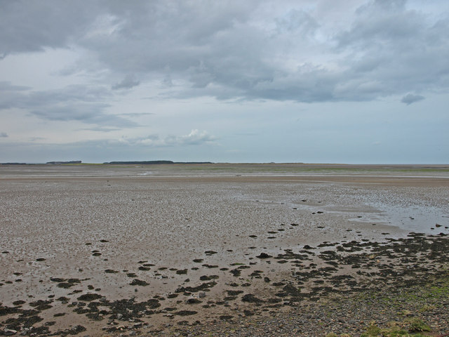 Budle Bay - geograph.org.uk - 785293