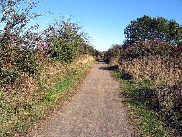 Castle Eden Walkway - geograph.org.uk - 1521609