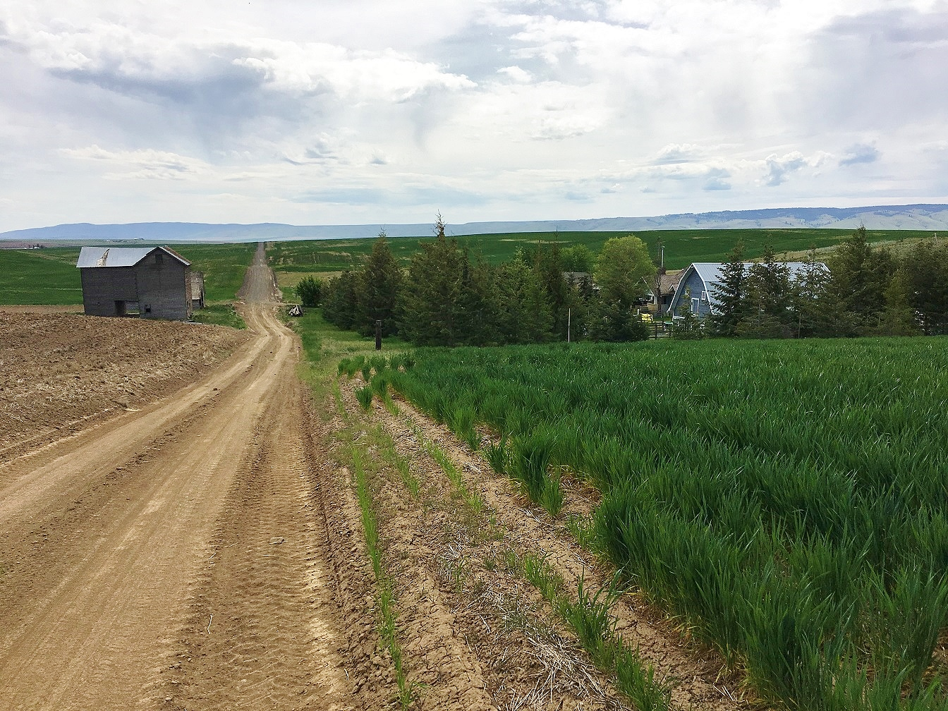 Douglas County Property Search By Nam E