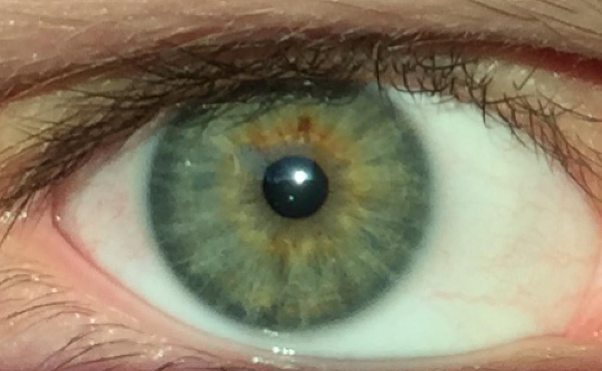 ficheirogreen eyes humanpng � wikip233dia a enciclop233dia