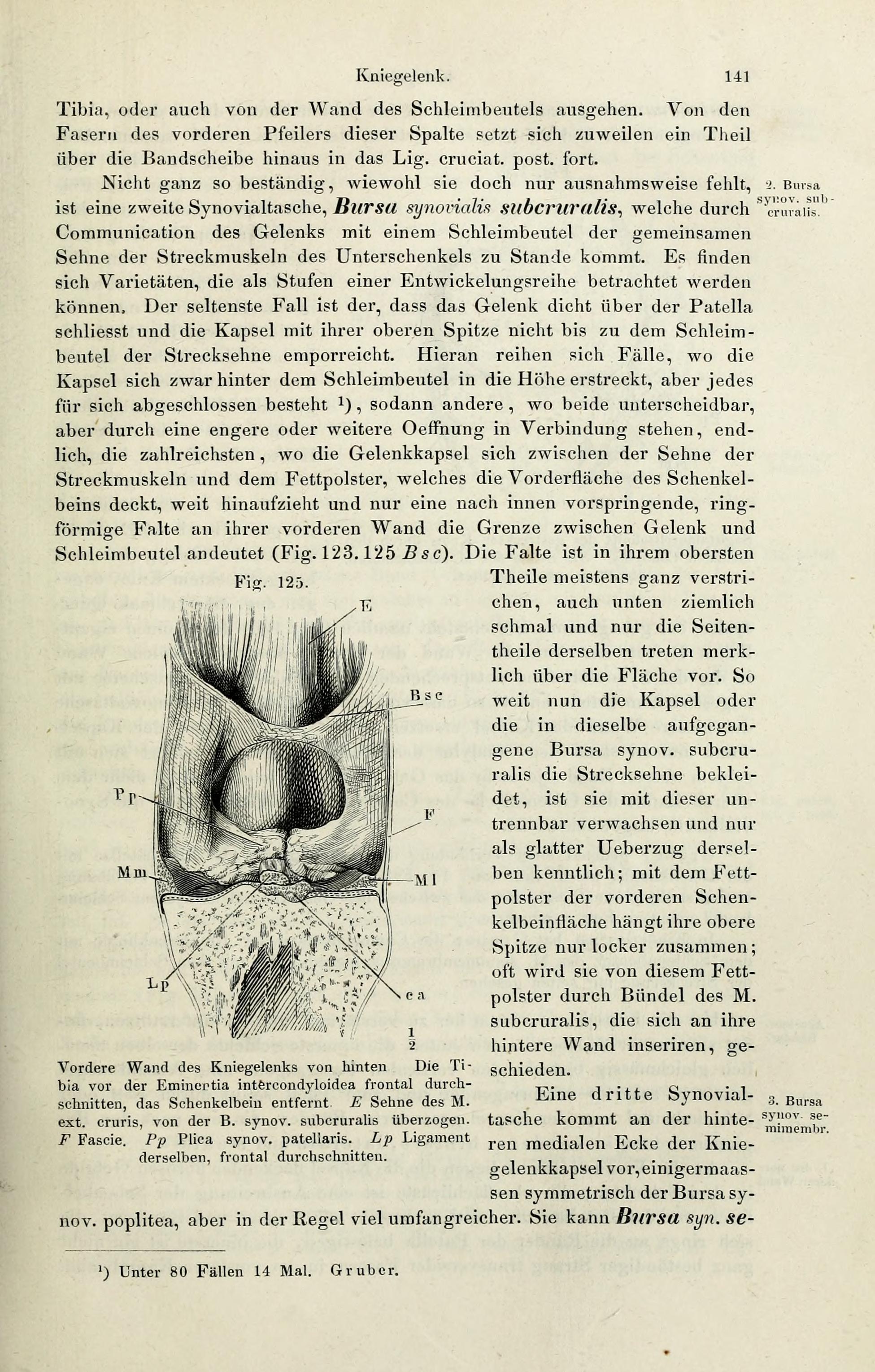Gemütlich John Truby Die Anatomie Der Geschichte Galerie ...