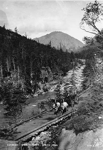 File Horse And Wagon On A Log Road On The White Pass Trail