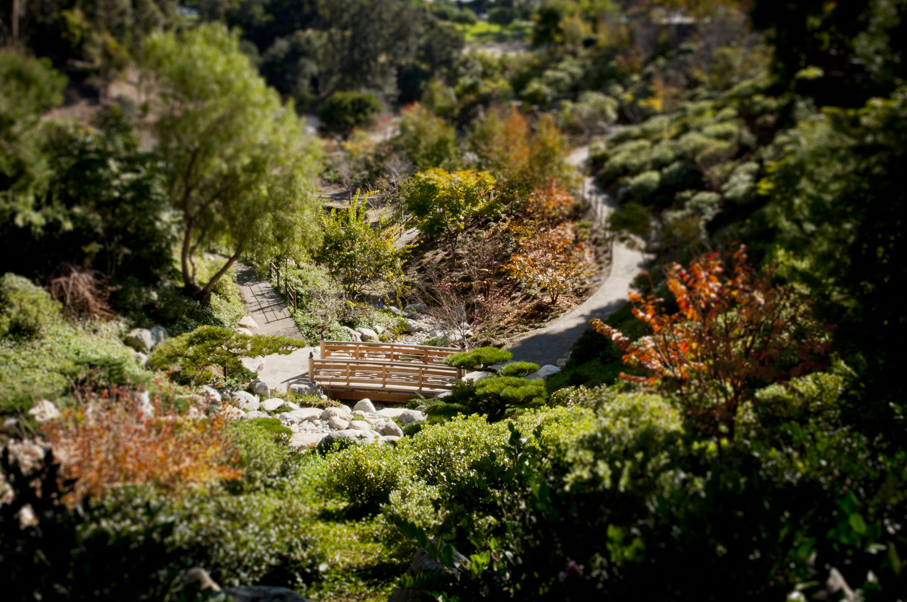 File:Japanese Garden at Balboa Park in San Diego (8726081405).jpg ...