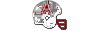 Kit helmet aguilas blancas.png