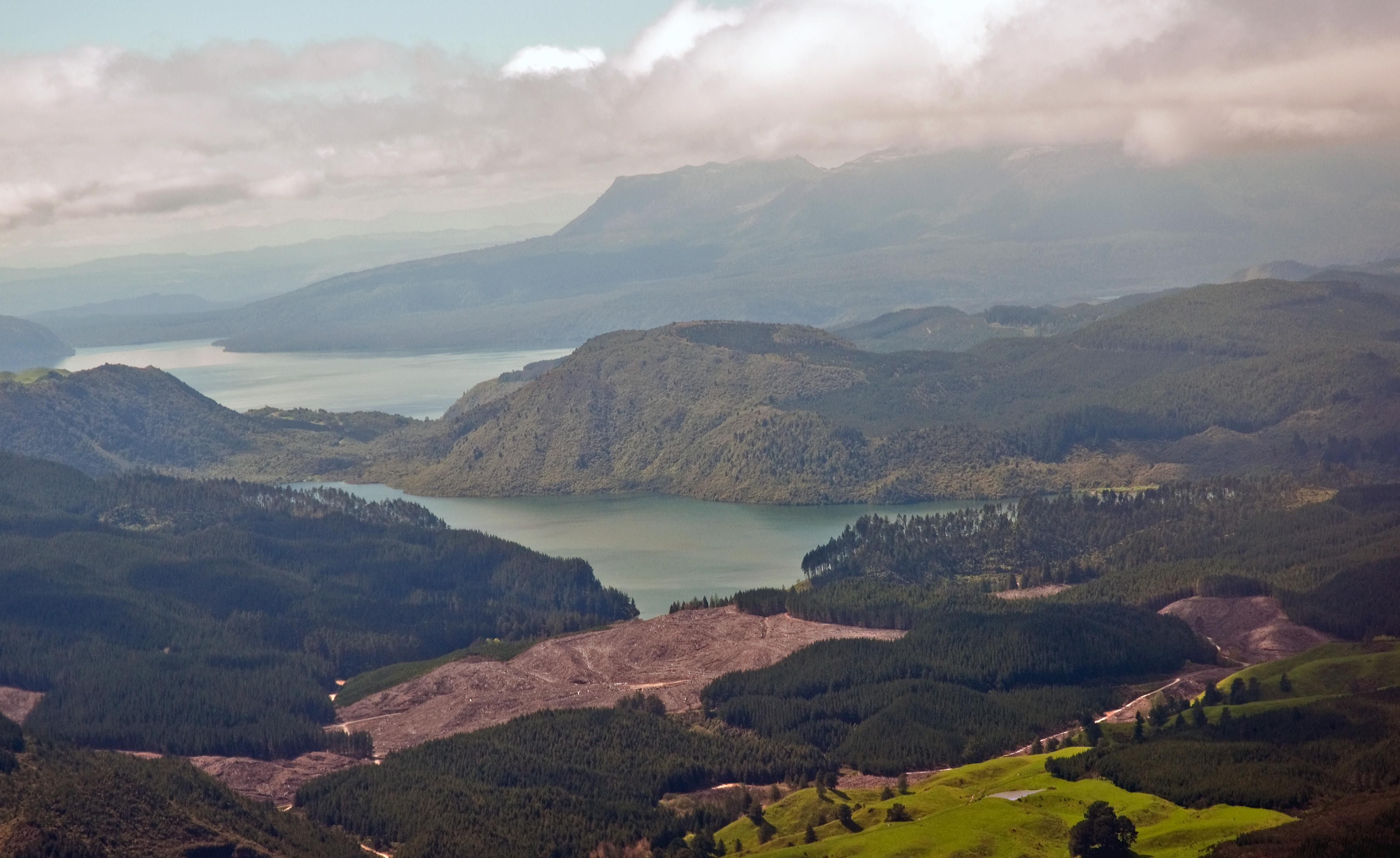 Rotorua New Zealand Stage Music Tour Gold Price